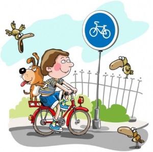 О чем должен знать велосипедист